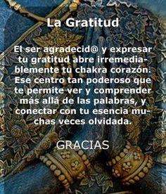 〽️ La Gratitud