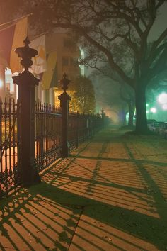 A fence and its shadow on a sidewalk in fog near Morris - Downman House at 2525 Saint Charles Avenue in Garden District