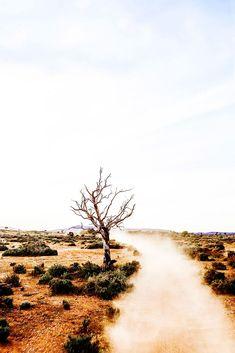 Roadtrip – The Northern Territory – Kara Rosenlund Animals Tattoo, Australian Road Trip, Australian Desert, Australian Bush, Kara Rosenlund, Australia Landscape, Australian Photography, Melbourne, Thinking Day
