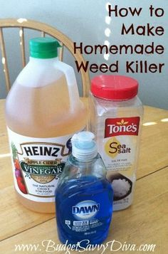 Mix 1/2 gallon of Apple Cider Vinegar, 1/4 c table salt and 1/2 tsp Dawn liquid dish soap and pour into a spray bottle. Then just spray weeds thoroughly.