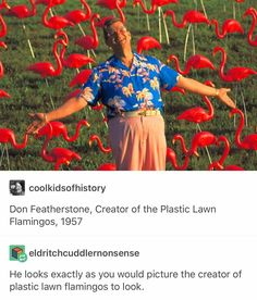 Don Featherstone, Creator of the Plastic Lawn Flamingos, 1957 - He looks exactly as you would picture the creator of plastic lawn flamingos to look Don Featherstone, Class Memes, Haha, Funny Memes, Hilarious, Funny Tweets, Funny Tumblr Posts, Laugh Out Loud, The Funny