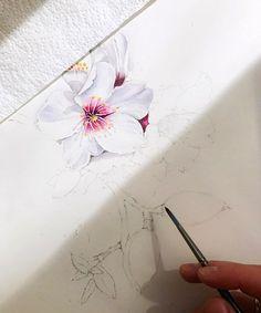 "6,701 Likes, 15 Comments - Watercolor illustrations (@watercolor.illustrations) on Instagram: "" Watercolorist: @natalialevshina_aqua #waterblog #акварель #aquarelle #painting #drawing #art…"""
