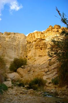Hiking in En Gedi, David's Waterfall, Israel, near the Dead Sea