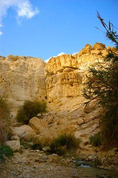 Hiking in En Gedi, David's Waterfall, Israel, near the Dead Sea