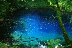 東北観光にお勧めな「至極の絶景」25選。言葉を失うほどの美しさ…。 - Find Travel | http://www.kabegamikan.com/p/i.php?url=www.kabegamikan.com%2Fimg%2Fna8%2F118063.jpg