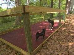 Dog pen. I'd build a doggy cabana in one end and let them sleep out there when…