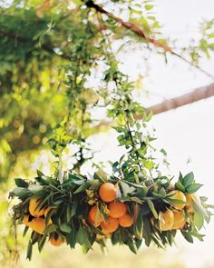 Greenery and fruits chandelier for summer wedding decor ideas Lustre Floral, Orange Wedding Flowers, Orange Flowers, Wedding Greenery, Wedding Colors, Deco Floral, Floral Design, Party Decoration, Wedding Decorations
