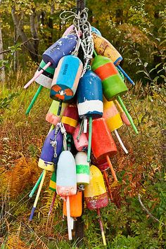 buoys, weird but cool, just like me