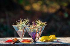 terariu-plante-aeriene-trei-piramida-nisip-natur-greenarium Martini, Incense, Tableware, Vintage, Plant, Dinnerware, Tablewares, Vintage Comics, Dishes
