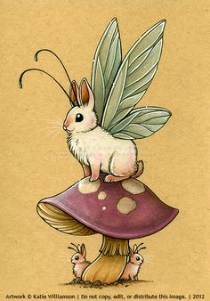 Bunnyfly. Katie Williamson