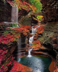Watkins Glen State Park, New York                                                                                                                                                                                 More