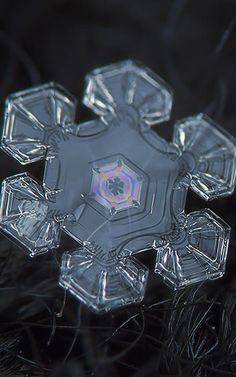 Snowflake. by Alexey Kljatov
