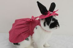 Pink polka dot bunny harness dress with matching by turvytopsy, $55.00