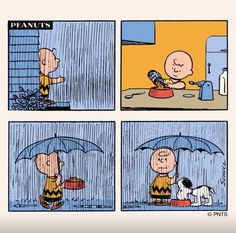 Peanuts in the rain