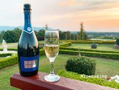 How to get better Prosecco for the price. Should you try Prosecco from Tesco, Aldi, Sainsbury? Prosecco DOCG or DOC? What Is Prosecco, Prosecco Vs Champagne, Stainless Steel Tanks, Wine Reviews, Wine Parties, Italian Wine, Sparkling Wine, Wine Making