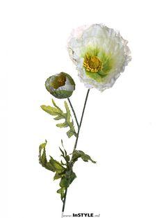 InSTYLE - NERA: Искусственные цветы Showroom Home