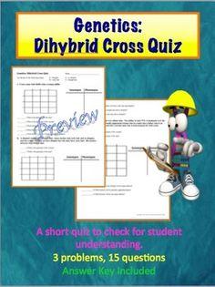 Genetics:  Dihybrid (Two Factor) Problem Quiz
