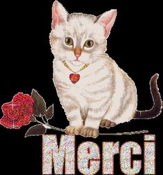 Gif Animé, Animated Gif, Merci Gif, Thanks Gif, Happy Weekend Images, Thank You Images, Image Chat, Good Morning Good Night, Gifs