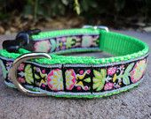 fairytailcollars on etsy, my new fave! Please check out her site, cute stuff for your doggy dogs AND she's doing good work for our fury friends. <3