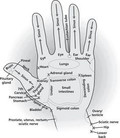 Energy areas of your hands that can be used for acupressure, energy healing, as well as direct hand massage to get the energy flow patterns for these areas of the body in a high vibrational format. Try drawing the Reiki Power Symbol over the area before y Young Living Oils, Young Living Essential Oils, Ayurveda, Hand Reflexology, Reflexology Points, Shiatsu, Mudras, Acupressure Points, Acupressure Therapy