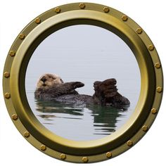 The Lazy Sea Otter Porthole Vinyl Wall Decal by WilsonGraphics