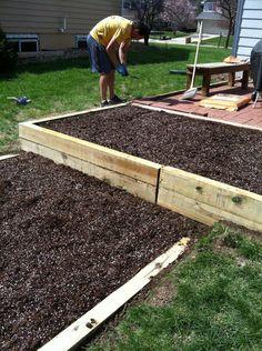 DIY raised bed garden