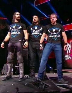 This puts a smile on my face and makes me say if their heel or face I am going to cheer for them and hope they last FOREVER Roman Reigns Wwe Champion, Wwe Superstar Roman Reigns, Wwe Roman Reigns, Dean Ambrose Shield, Roman Reigns Dean Ambrose, Wrestling Stars, Wrestling Wwe, Nikki Bella, Brie Bella