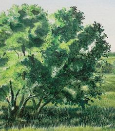 Can you successfully paint watercolor over wax-based colored pencil? Can you then add more color with colored pencil? Pencil Trees, Art Drawings Sketches Simple, Green Landscape, Colored Pencils, Watercolor Paintings, Wax, Artist, How To Draw Trees, Carrie