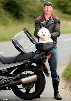 Scooter License Plate Frame Love Dogs Black with Pink Motorcycle Very Cute  Boy and Dog