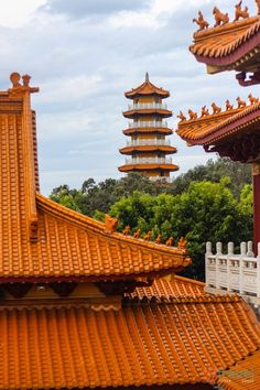 Nan Tien Temple, Berkeley, Australia — by Caz and Craig Places Around The World, Oh The Places You'll Go, Places To Visit, Vacation Destinations, Vacation Spots, Wonderful Places, Beautiful Places, Amazing Places, Wollongong Australia