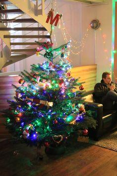 Wir schmücken den Weihnachtsbaum 2015