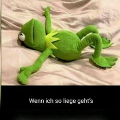 If I& lying like this Kermit. - If I& lying like this Kermit. Best Picture For Funny cartoons For Your Taste You are lookin - 9gag Funny, Funny Memes, Hilarious, 9gag Memes, Funny Cartoons, Funny Animal Quotes, Animal Memes, Kermit The Frog, Morning Humor