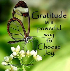 Gratitude is a powerful way to choose joy! Happy Thoughts, Positive Thoughts, Positive Quotes, Gratitude Quotes, Attitude Of Gratitude, Happiness Quotes, Louise Hay, Relationship Quotes, Life Quotes