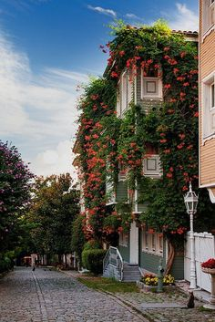Flowers line the houses along the street leading towards Hagia Sophia and the Blue Mosque Istanbul: Gardens / by Nomadic Vision Photography Wonderful Places, Beautiful Places, Amazing Places, Places Around The World, Around The Worlds, Blue Mosque Istanbul, Bósnia E Herzegovina, Sainte Sophie, Vision Photography