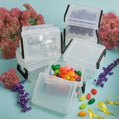 Perfectly Plain Collection Mini Container Favors - DISC.6750