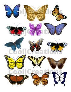 Scrapbook Images, Digital Scrapbooking Layouts, Scrapbook Paper, Butterfly Clip Art, Butterfly Pictures, Flower Clipart, Scrapbook Journal, Beautiful Butterflies, Digital Collage