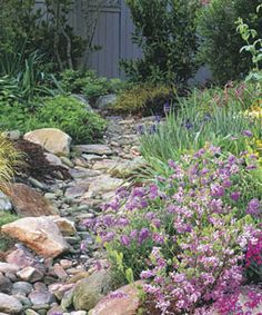 Dry creek bed - I have some river stones and other rocks and we have a drainage problem... I plan to add an element like this for beauty and function...