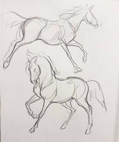 Horse Drawings, Animal Drawings, Cool Drawings, Drawing Sketches, Drawing Art, Drawing Animals, Pictures For Drawing, Drawings Of Dogs, Drawing Hands