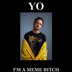 Yo, I'm a meme bitch....Jesse from Breaking Bad