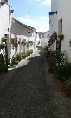 Moura, Alentejo, Portugal.