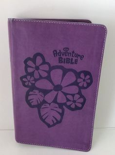 NIrV Adventure Bible for Early Readers Kidz Bibles Purple Cover New Intl Edition