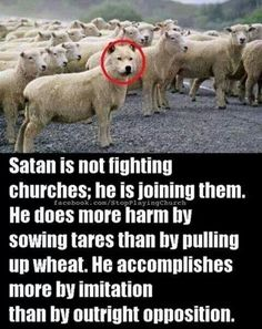 Wolf in sheep's clothing. The sheepish follow Obama. Oh his approval rating is at 11%