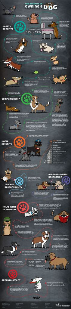 The Benefits of Having a Dog #INFOGRAPHIC