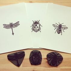 Insect Linocut Prints by Inkshed Press