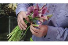 How to Cut Cala Lillies (5 Steps)   eHow