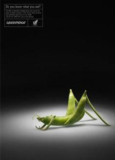 do-you-know-what-you-eat-gmo-peas.jpg