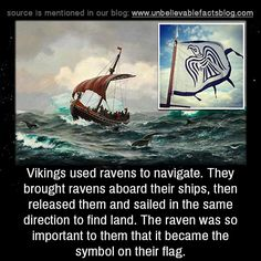 Viking Lore: Vikings used ravens to navigate. They brought ravens aboard their ships, then released them and sailed in the same direction to find land. The raven was so important to them that it became the symbol. Real Vikings, Norse Vikings, Norse Pagan, Norse Mythology, Viking Facts, Thor, Viking Culture, Viking Life, Vegvisir