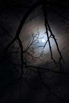 New Moon by Mattia Daldoss