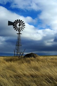 'Tilting at windmills' Matthew Lacey Tilting At Windmills, Old Windmills, Farm Windmill, Wind Of Change, Country Scenes, Water Tower, Old Barns, Le Moulin, Pretty Pictures