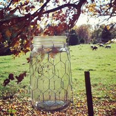 Country Wedding Mason Jars | Hanging Mason Jar Holders Country Wedding by ... | Gardening & Outdoo ...